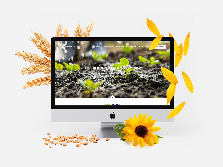 Yellow Lemon Tree - Keygene
